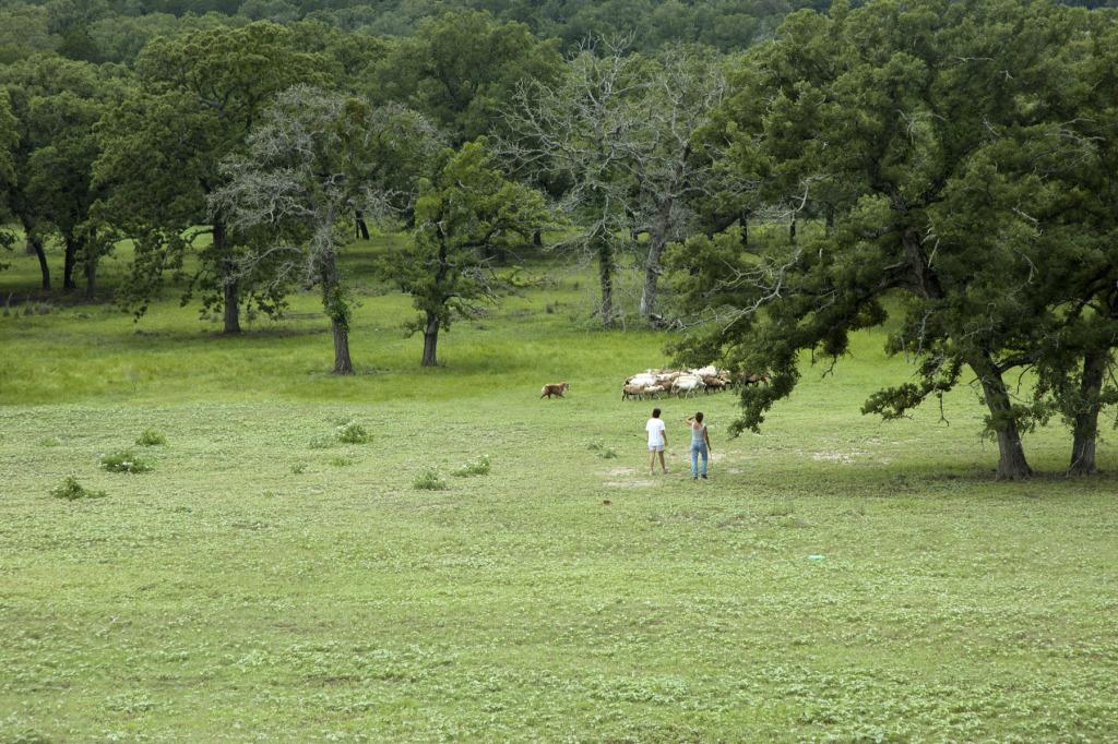ch15 TexasMay2007-0004